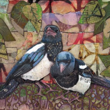 Magpies in Color