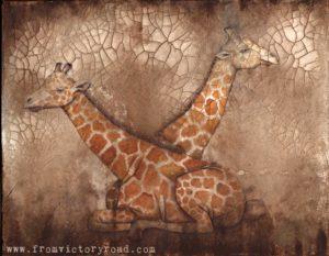 giraffes wm