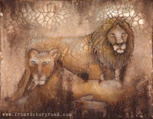 lions wm
